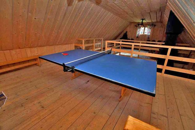 Ośrodek Wypoczynkowy U Gosi i Pawła - ping pong