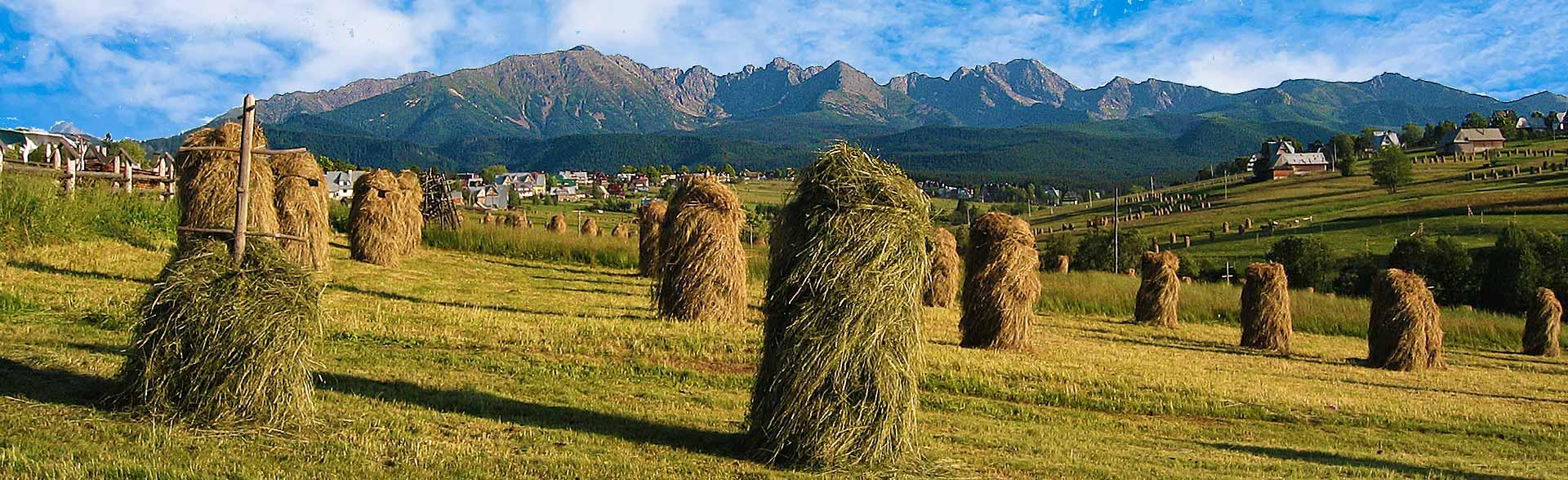 Murzasichle, widok na Tatry