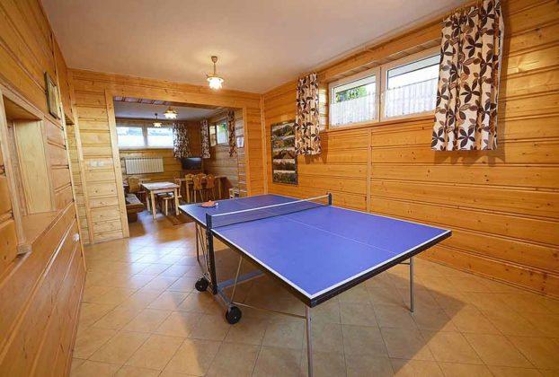 Pokoje Gościnne Teklarz - ping pong
