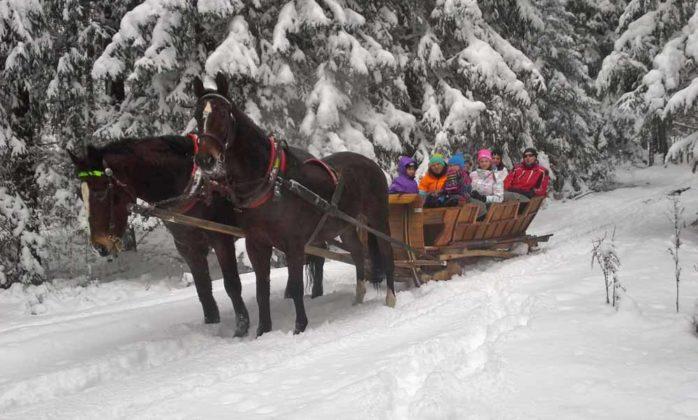 Cudzich, kulig zimą w saniach w Murzasichlu